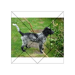 Black Roan English Cocker Spaniel Full 2 Acrylic Tangram Puzzle (4  x 4 )