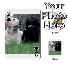 2 Labs Playing Cards 54 Designs