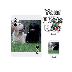 2 Labs Playing Cards 54 (Mini)