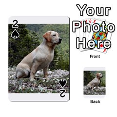 Yellow Lab Sitting Playing Cards 54 Designs