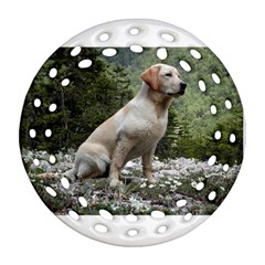 Yellow Lab Sitting Round Filigree Ornament (2Side)