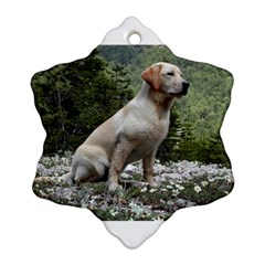 Yellow Lab Sitting Snowflake Ornament (2-Side)