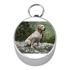 Yellow Lab Sitting Mini Silver Compasses