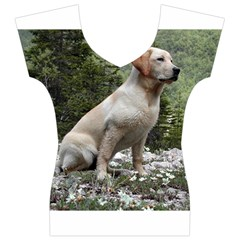 Yellow Lab Sitting Women s V-Neck Cap Sleeve Top