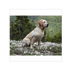 Yellow Lab Sitting Small Satin Scarf (Square)