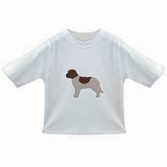 Lagotto Romagnolo Silo Color Infant/Toddler T-Shirts