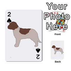 Lagotto Romagnolo Silo Color Playing Cards 54 Designs
