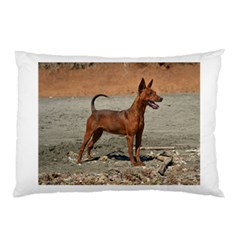 Min Pin Full Pillow Cases (Two Sides)