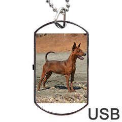 Min Pin Full Dog Tag USB Flash (Two Sides)