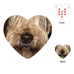 Wheaten Playing Cards (Heart)