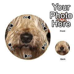 Wheaten Playing Cards 54 (Round)