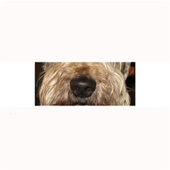 Wheaten Large Bar Mats