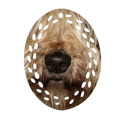Wheaten Ornament (Oval Filigree)