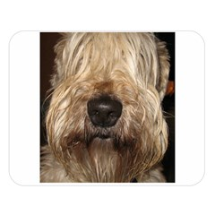 Wheaten Double Sided Flano Blanket (Large)