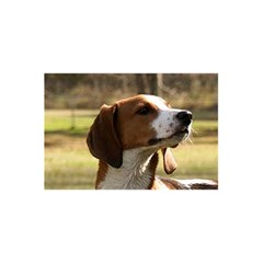 Treeing Walker Coonhound 5.5  x 8.5  Notebooks