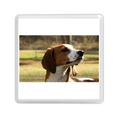 Treeing Walker Coonhound Memory Card Reader (Square)