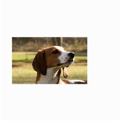 Treeing Walker Coonhound Small Garden Flag (Two Sides)