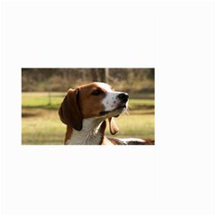 Treeing Walker Coonhound Large Garden Flag (two Sides)