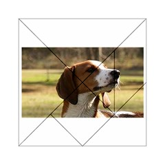 Treeing Walker Coonhound Acrylic Tangram Puzzle (6  x 6 )