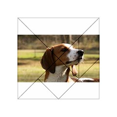 Treeing Walker Coonhound Acrylic Tangram Puzzle (4  x 4 )