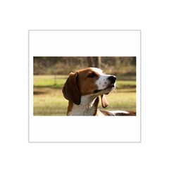 Treeing Walker Coonhound Satin Bandana Scarf
