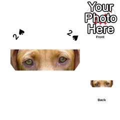 Vizsla Eyes Playing Cards 54 (Heart)