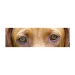 Vizsla Eyes Magic Photo Cubes