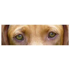Vizsla Eyes YOU ARE INVITED 3D Greeting Card (8x4)