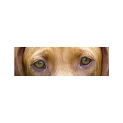 Vizsla Eyes Birthday Cake 3D Greeting Card (7x5)