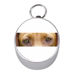 Vizsla Eyes Mini Silver Compasses