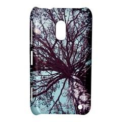 Under Tree  Nokia Lumia 620