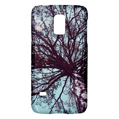 Under Tree  Galaxy S5 Mini