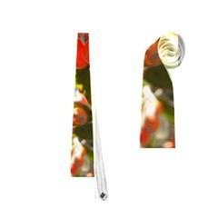 Rowan Neckties (Two Side)
