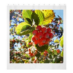 Rowan Shower Curtain 66  x 72  (Large)