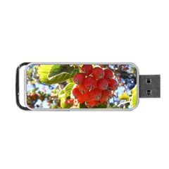 Rowan Portable Usb Flash (two Sides)