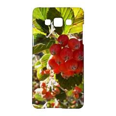 Rowan Samsung Galaxy A5 Hardshell Case