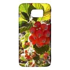 Rowan Galaxy S6