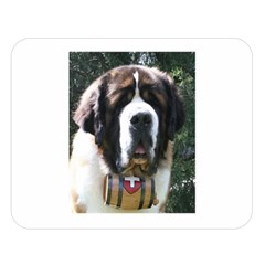St Bernard Double Sided Flano Blanket (Large)