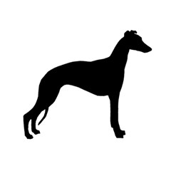 Whippet Silhouette Birthday Cake 3D Greeting Card (7x5)