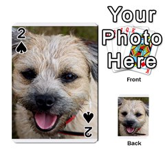 Border Terrier Playing Cards 54 Designs