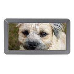 Border Terrier Memory Card Reader (Mini)