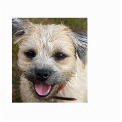 Border Terrier Large Garden Flag (Two Sides)