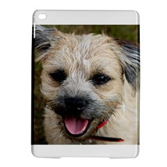 Border Terrier iPad Air 2 Hardshell Cases