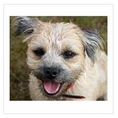 Border Terrier Large Satin Scarf (square)