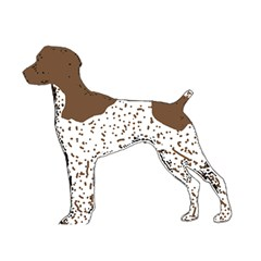 German Shorthair Pointer Silo Color Birthday Cake 3D Greeting Card (7x5)