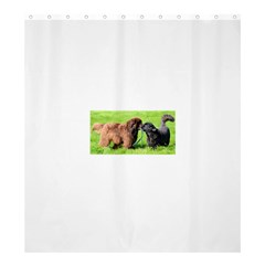 2 Newfies Shower Curtain 66  x 72  (Large)