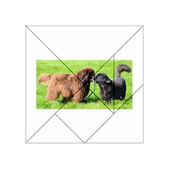 2 Newfies Acrylic Tangram Puzzle (4  x 4 )