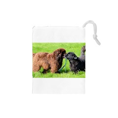 2 Newfies Drawstring Pouches (Small)