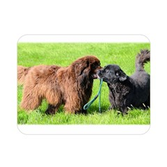2 Newfies Double Sided Flano Blanket (Mini)