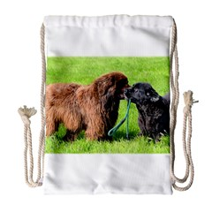 2 Newfies Drawstring Bag (large)